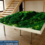 Topographical Scale Model Mountainous