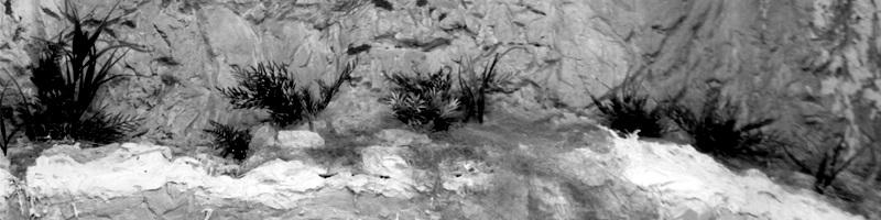 Rock and Sone Habitat - Diorama of a Mountain Wall HEADER