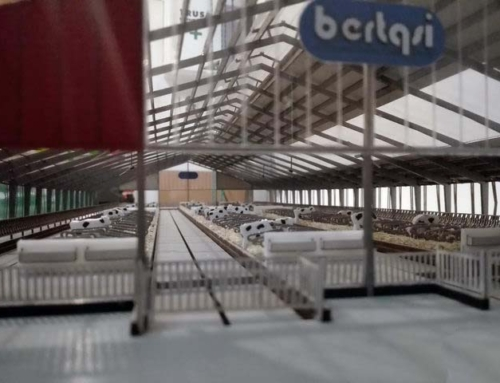 Bertaqsi Animal Farms Italy Architectural Scale Models